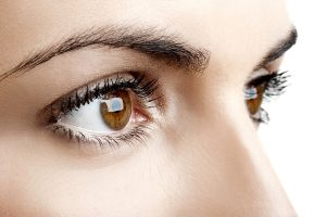 eyelash-tintingharmony beauty salon dunstable
